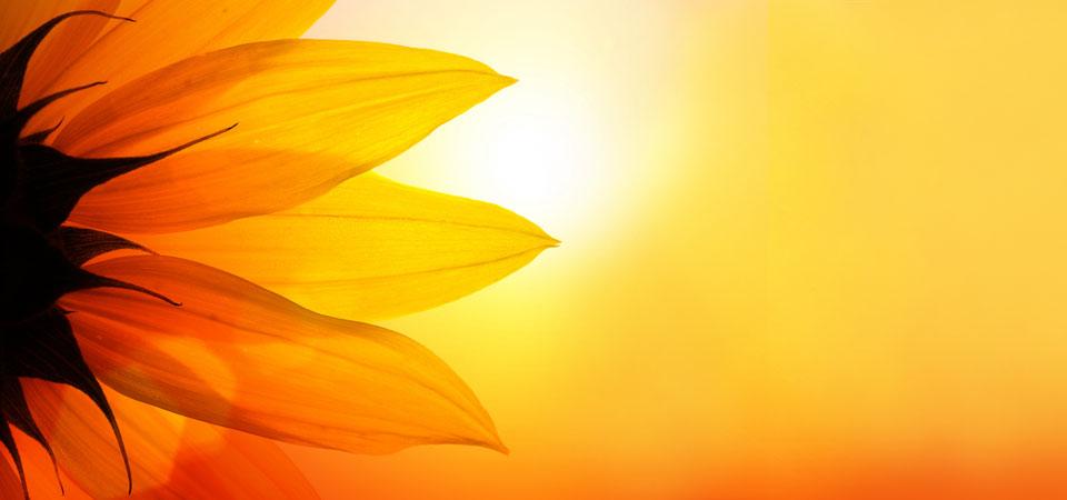 solare